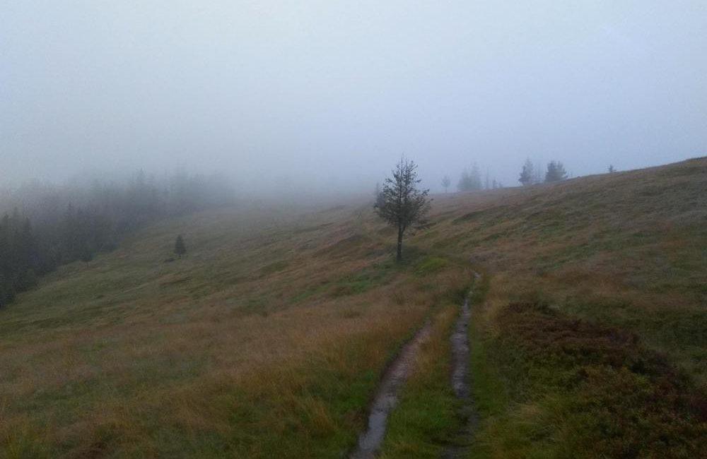 Przez zamglony Beskid Śląski – Główny Szlak Beskidzki