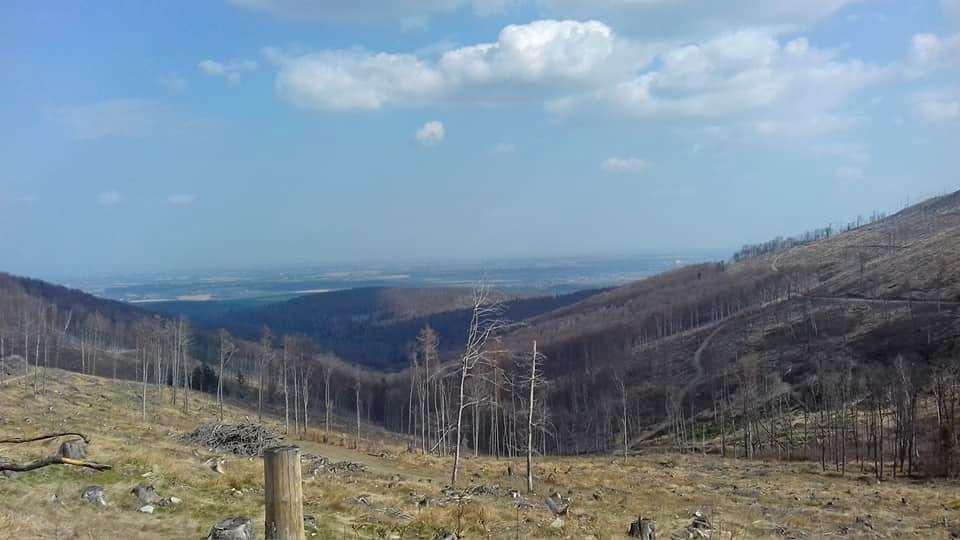 W Górach Opawskich