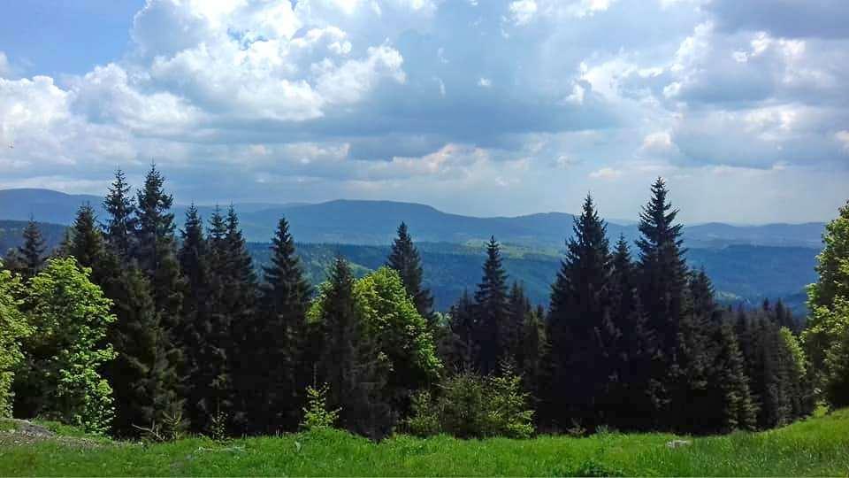 Polsko-czeską granicą w Górach Bialskich