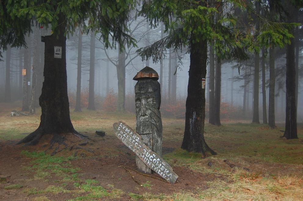Kalenica w grudniowej mgle