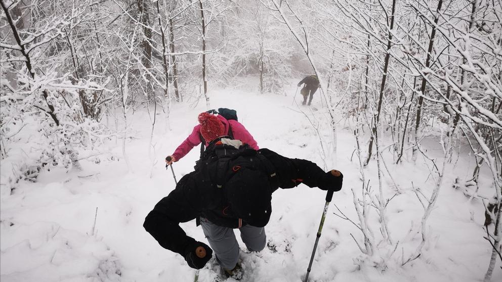 Pogranicze jesienno-zimowe w Górach Kamiennych