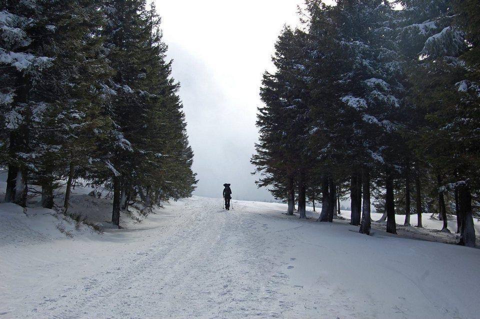 śnież3