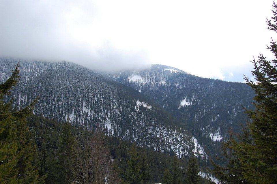 śnież93