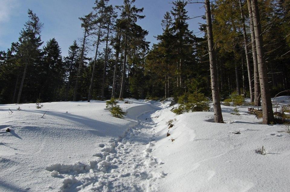 snież6