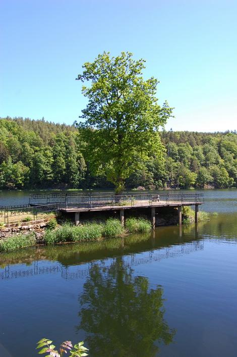 Zezioro Złotnickie2222