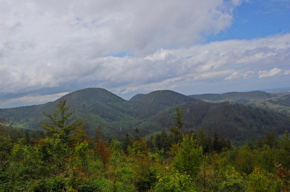 91 Widok z Jałowca na Borową, Suchą i