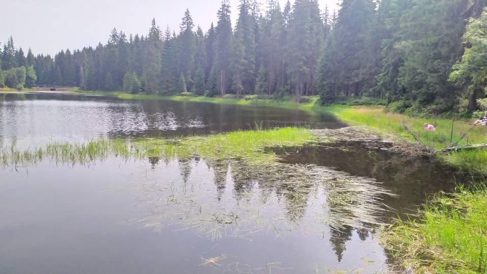 Jezioro Bedřichov