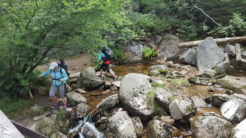 Poskakane nad górskim potokiem