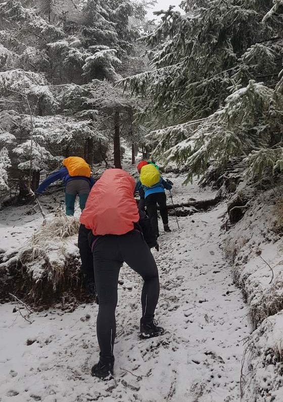 Zimowi pływacy w Górach Kamiennych
