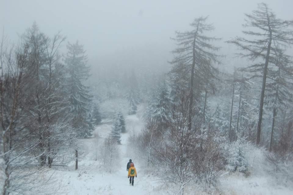 0000Głuszyca zimą0012