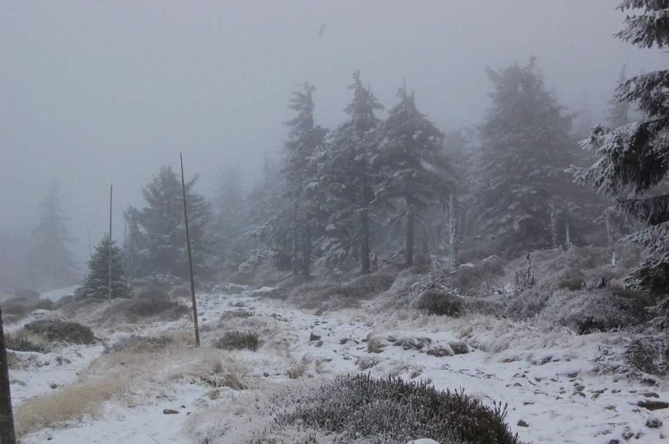 Przedbiegi zimy w Karkonoszach